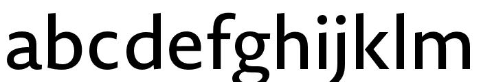 Novel Sans Pro XCmp Medium Font LOWERCASE