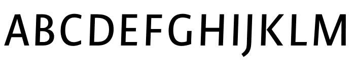 Novel Sans Pro XCnd Medium It Font UPPERCASE