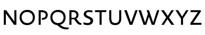 Novel Sans Pro XCnd Medium Font UPPERCASE