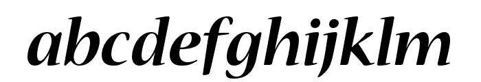 Nueva Std Bold Condensed Italic Font LOWERCASE