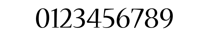 Nueva Std Condensed Font OTHER CHARS