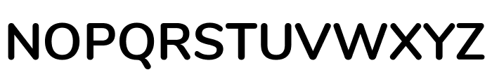Nunito Bold Font UPPERCASE