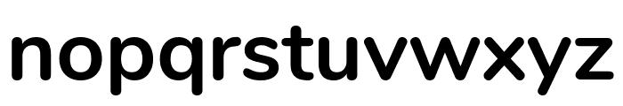 Nunito Bold Font LOWERCASE