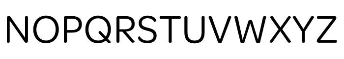 Omnes SemiCond Regular Font UPPERCASE