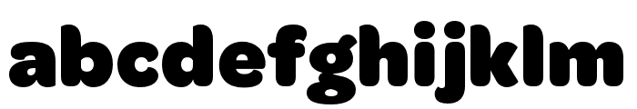 OmnesArabic Black Font LOWERCASE