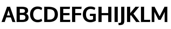 Oxygen Bold Font UPPERCASE