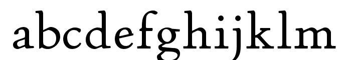 P22 Stickley Pro Text Font LOWERCASE