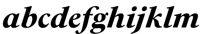 PSFournier Std Petit Heavy Italic Font LOWERCASE