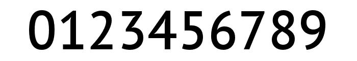 PT Sans Pro Condensed Demi Font OTHER CHARS