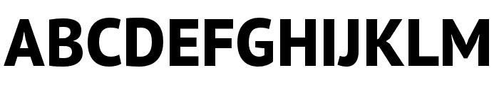 PT Sans Pro Narrow Extra Bold Font UPPERCASE
