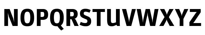 Parka ExtraBold Font UPPERCASE