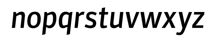 Parka Medium Italic Font LOWERCASE