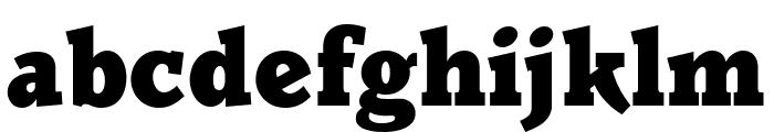 Parkinson Black Font LOWERCASE