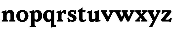 Parkinson Bold Font LOWERCASE