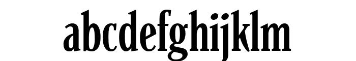 Parkinson CondensedLight Font LOWERCASE