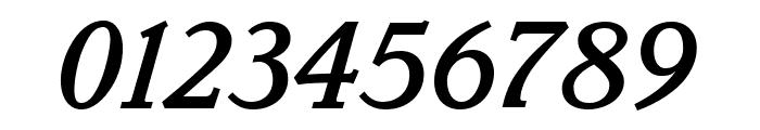 Parkinson MediumItalic Font OTHER CHARS