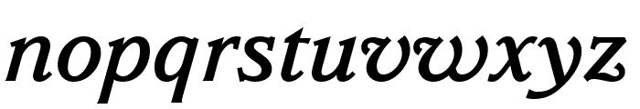 Parkinson MediumItalic Font LOWERCASE