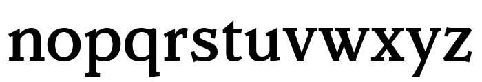 Parkinson Medium Font LOWERCASE