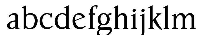 Parkinson Roman Font LOWERCASE