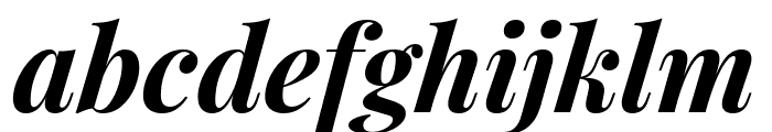 Playfair Display Bold Italic Font LOWERCASE
