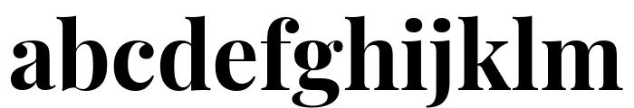 Playfair Display Bold Font LOWERCASE