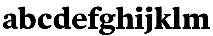 Poynter Oldstyle Text Bold Font LOWERCASE