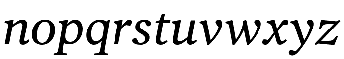 Poynter Oldstyle Text Italic Font LOWERCASE