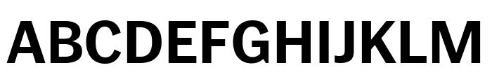 PoynterGothicText Bold Font UPPERCASE