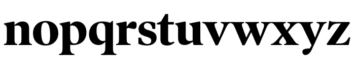 PoynterOSDisp Bold Font LOWERCASE