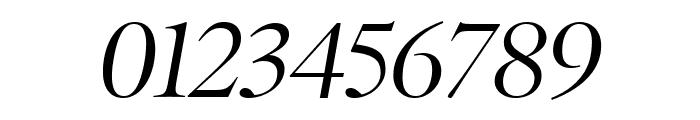 PoynterOSDisp Italic Font OTHER CHARS