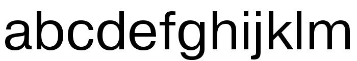 Pragmatica Cond Book Font LOWERCASE
