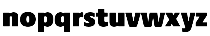 Praxis Next Condensed Ultra Font LOWERCASE