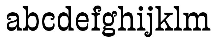 Presley Slab Light Italic Font LOWERCASE