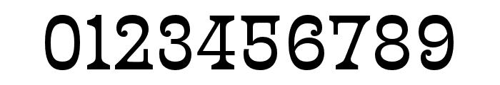 Presley Slab Thin Italic Font OTHER CHARS
