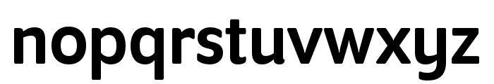 Program Nar OT Medium Font LOWERCASE