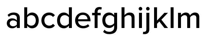 Proxima Nova Extra Condensed Medium Font LOWERCASE