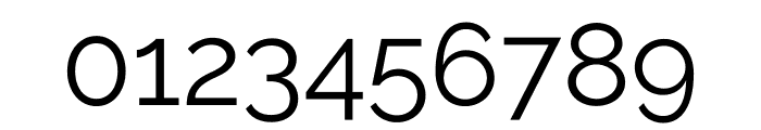 Raleway Regular Font OTHER CHARS