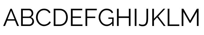 Raleway Regular Font UPPERCASE