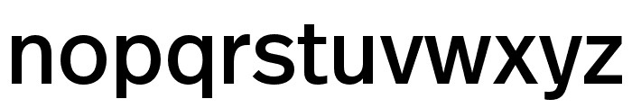 Real Head Pro Semilight Font LOWERCASE