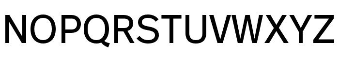 Real Text Pro Regular Font UPPERCASE