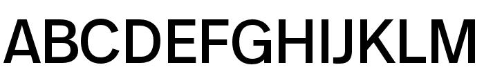 Real Text Pro Semilight Font UPPERCASE