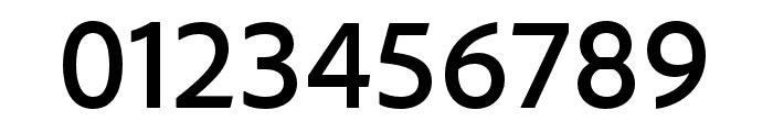 Regulator Nova Thin Italic Font OTHER CHARS