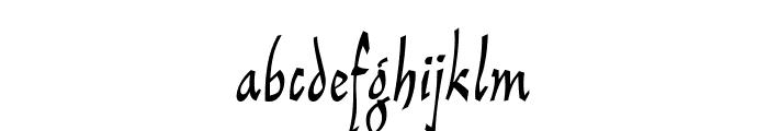 ReinerScript Regular Font LOWERCASE