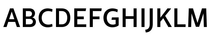 Rival Sans Narrow Medium Font UPPERCASE