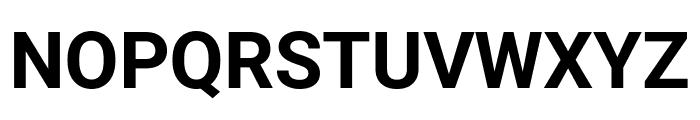 Roboto Mono Bold Font UPPERCASE