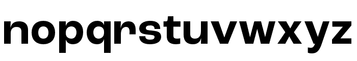Roc Grotesk Wide Bold Font LOWERCASE