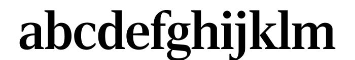 RockyComp Medium Font LOWERCASE