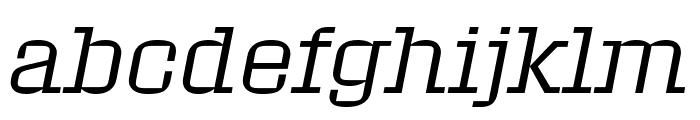 Roster Light Italic Font LOWERCASE