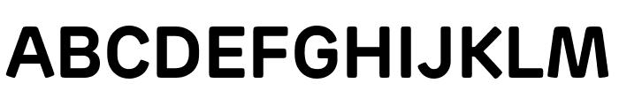 Rubrik Edge New Bold Font UPPERCASE