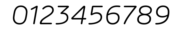 Rubrik New Light Italic Font OTHER CHARS